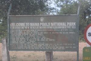 2Cartello Mana Pool